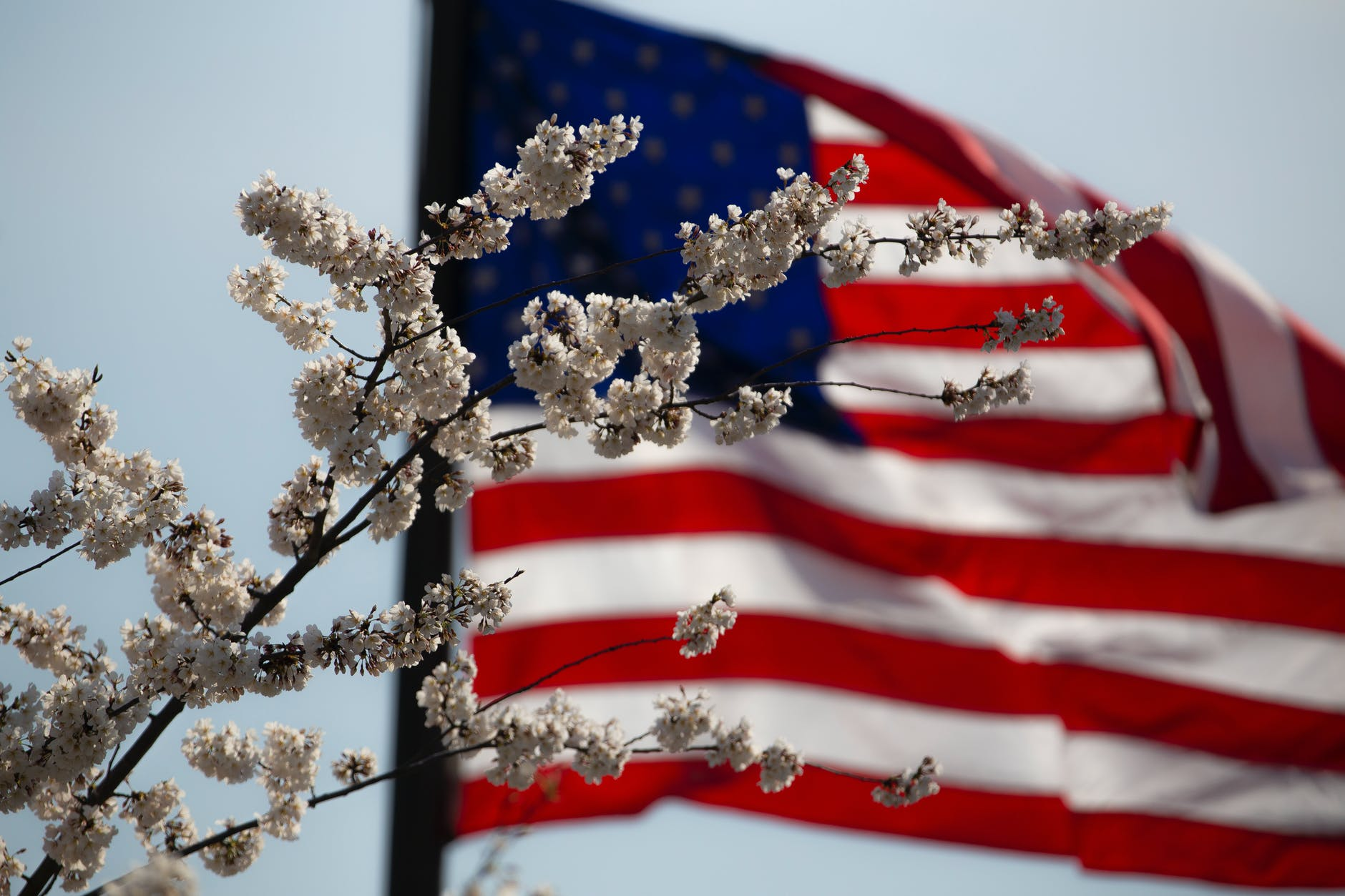 When is Memorial Day celebrated?